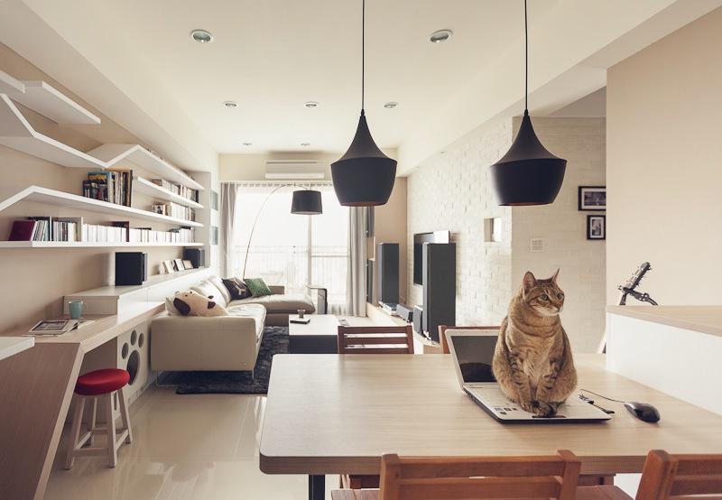 kat in huis geluk en energie
